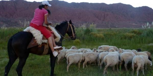 Fotos: Red Turismo Campesino Valles Calchaquies