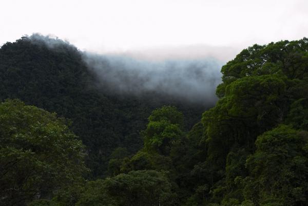 SPDA Actualidad Ambiental
