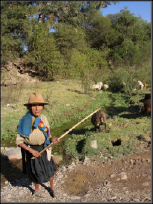 Especialista seleccionado contribuirá a la adaptación de las comunidadesd andina
